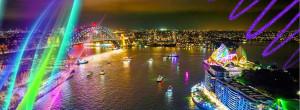 vivid harbour charters